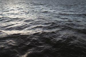 RIFF Open Seas